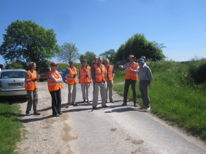 Trust members examining well managed wild flower verges in Lincolnshire.