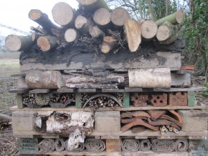 The Bug Hotel completed.