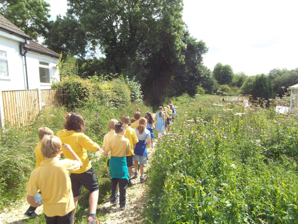 "Bardsey School years 5 and 6 visit the Ellikers and Keswick Marsh as part of their investigations on ""Going Green""."
