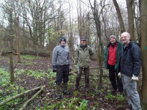 Creating the clearing in Elliker Wood