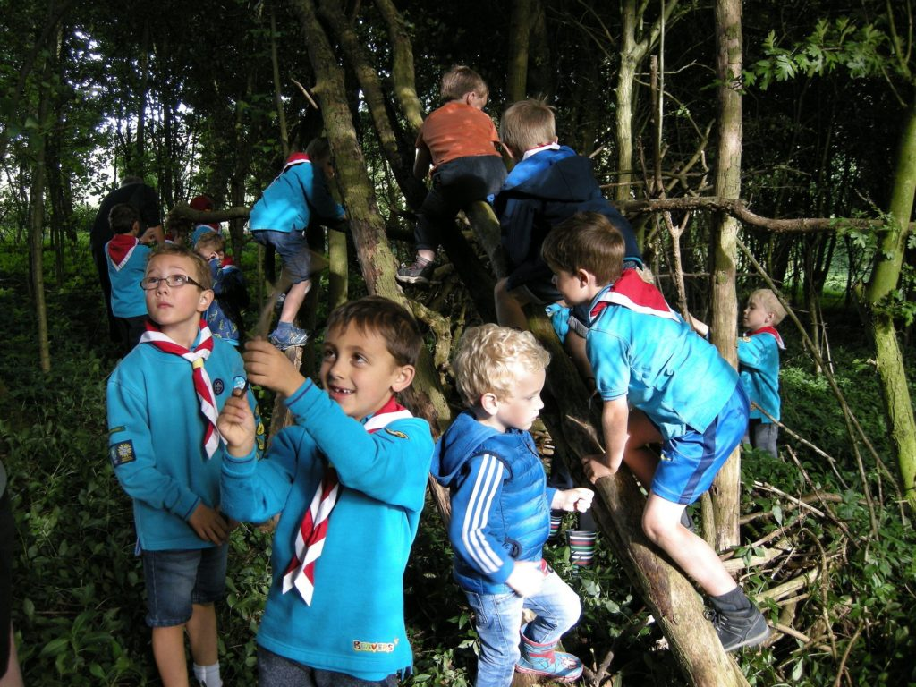 The local Beavers having fun in Elliker Wood